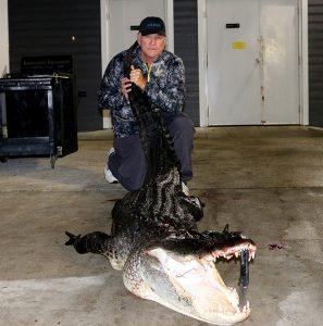 Gary harvests 11 foot gator